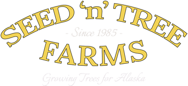 Seed-N-Tree Farms